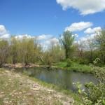 Anderson County Prairie Preserve