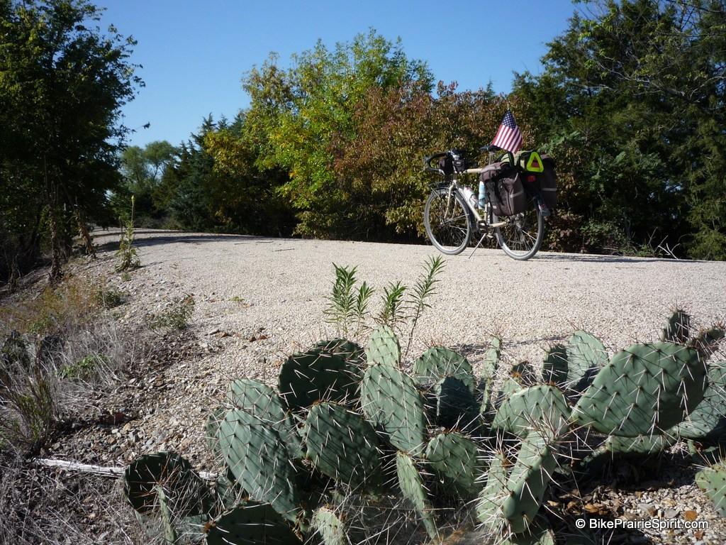 Prairie Spirit Trail Cactus 2012